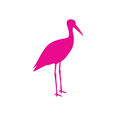 Storch magenta.PNG
