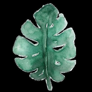Palmenblatt transparent.png