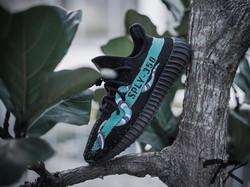 """Adidas Yeezy 350 V2 """"GUCCI SNAKE"""""""