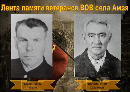 Боков-Валеев.jpg