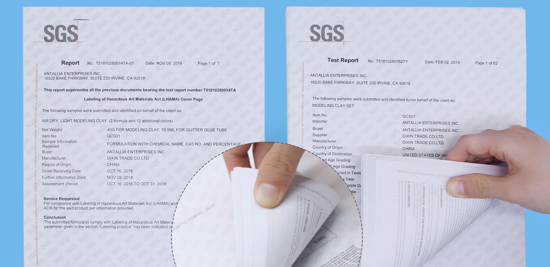 SGS REPORT.jpg