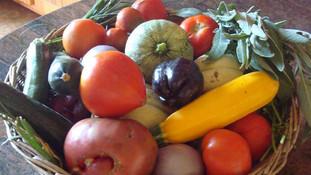 Nouveau contrat légumes