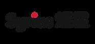 Syrius炬星logo_全彩.png