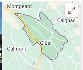 gibel google.PNG