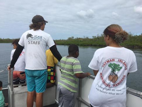 Mangrove Discovery Camp