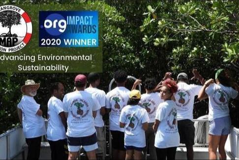 Mangrove Action Project Wins International Award