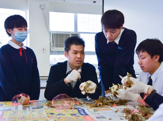 水仙花雕刻技巧班