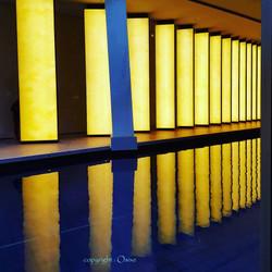 Yellow néons à l'eau