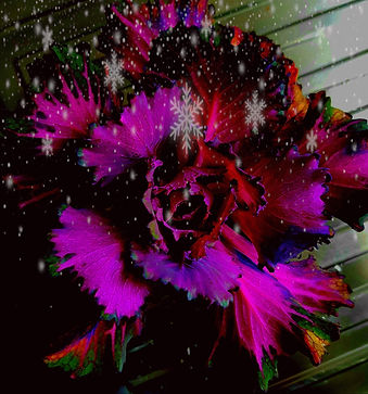Flocon fleur.jpg