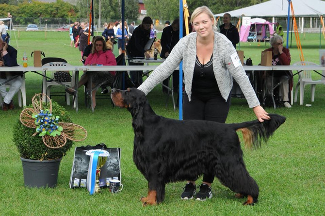 Helsinki all breed show