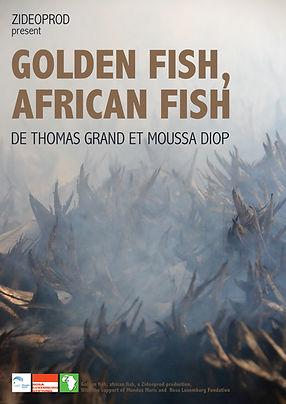 Aff Golden Fish African Fish.jpg