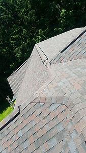 roof 1.jpg