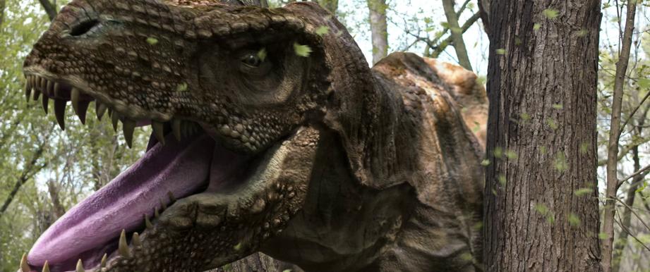 T-Rex stuck in a tree