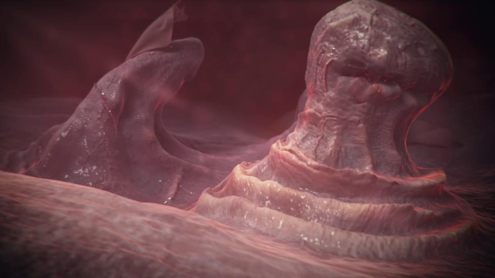 Extreme close up of human tongue
