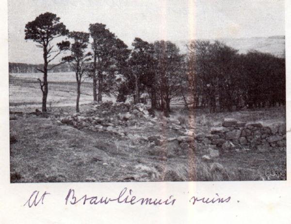 Brawliemuir Ruins.jpg