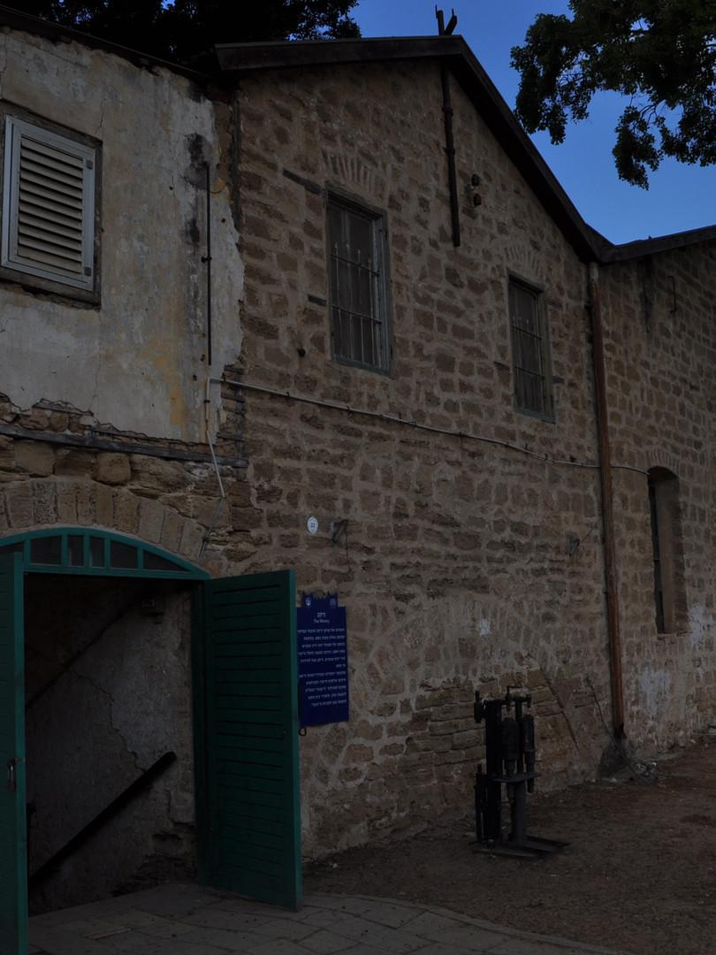 La cave à vins de Mikvé-Israël est en Kurkar, un grès tendre idéal pour la conservation de sa production viticole - la première en Israël à utiliser des cépages européens.