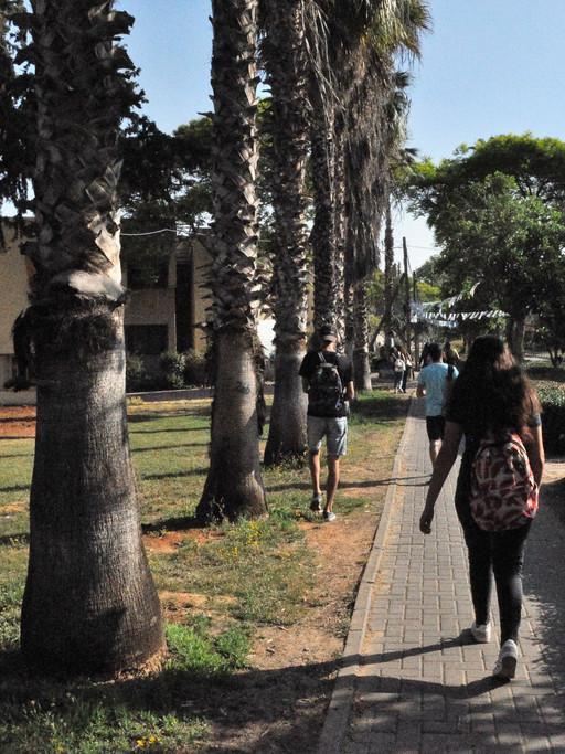 L'allée principale distribue vers les trois collèges-lycées du campus qui compte 1 500 élèves.