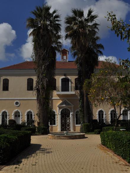 La synagogue de Mikvé-Israël a été construite en 1896, dans un style architectural mêlant les influences occidentale, méditerranéenne et orientale.