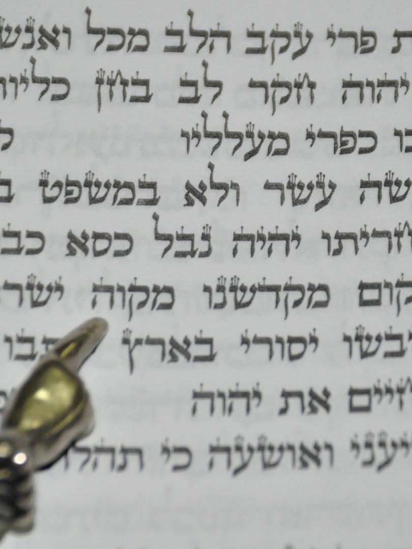 Dans le livre des prophètes, Jérémie emploie l'expression Mikvé Israël (14:8 et 17:13) «Toi qui es l'espérance d'Israël, ô Eternel !». Les fondateurs de l'école y voient aussi l'évocation de l'eau, source de vie pour la terre d'Israël