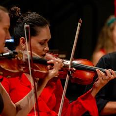 violin dso.jpg
