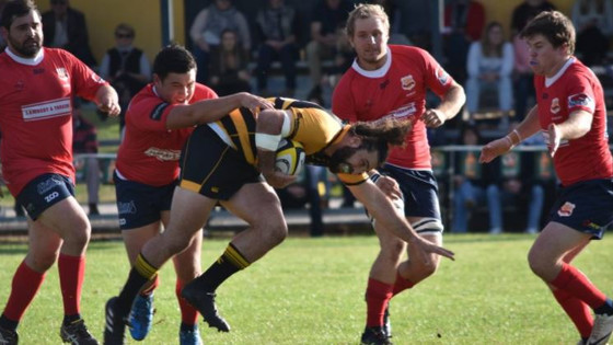 Central North Rugby Union: Slick Pirates too good for Gunnedah