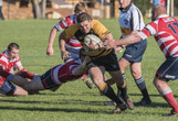 Central North Rugby: Pirates stave off gallant challenge from Walcha to win qualifying final