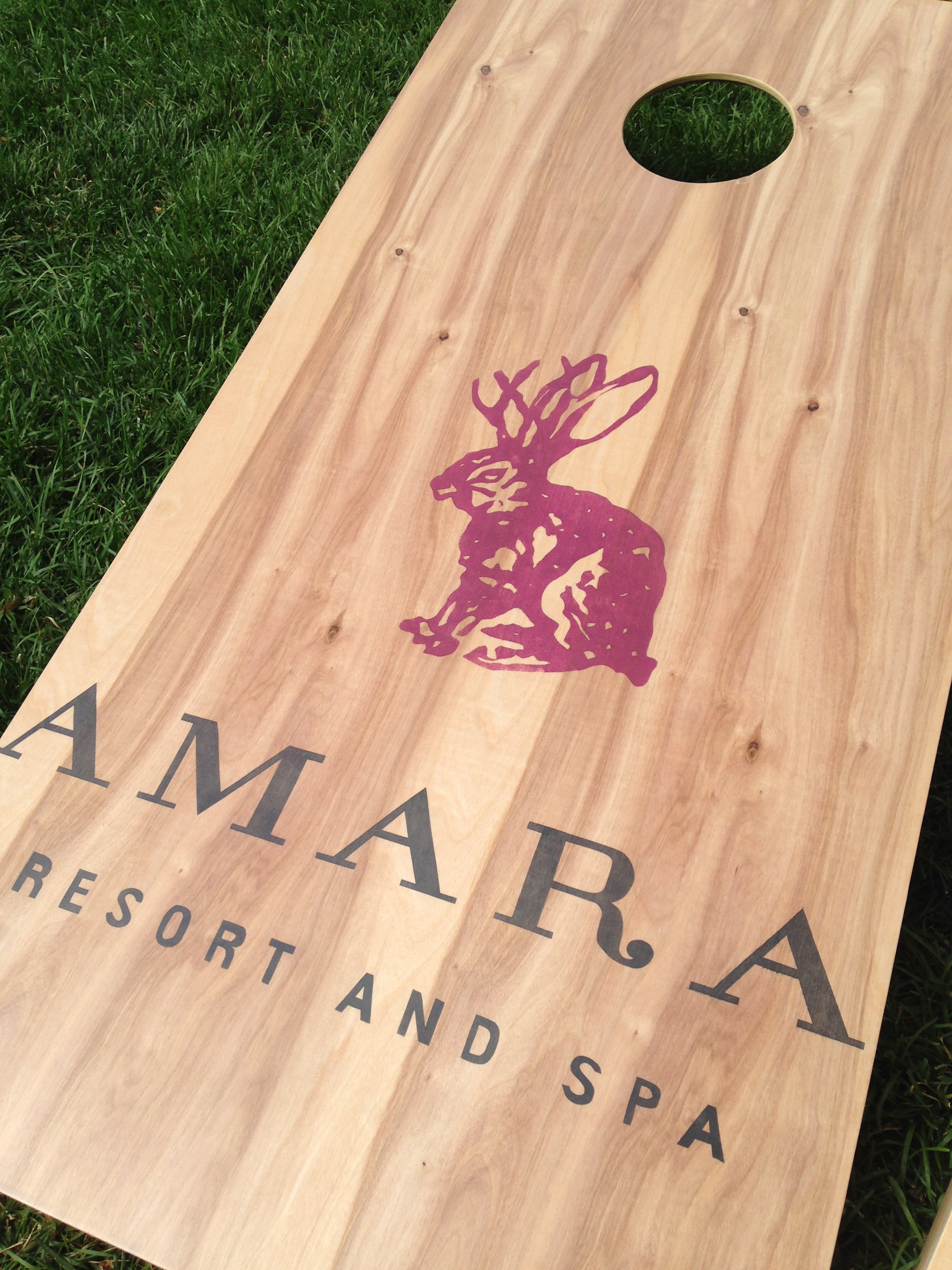 Arizona's Amara Resort Game