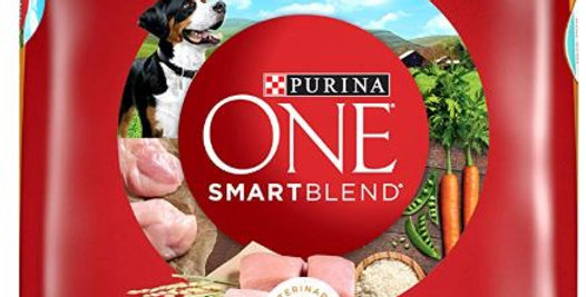 Purina ONE SmartBlend Natural Sensitive Systems, Digestive Health