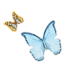 Papillon sur papier 1