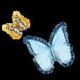 Vattenfärg fjäril 1