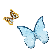 Akvarel motýl 1