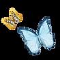 Mariposa 1 de la acuarela