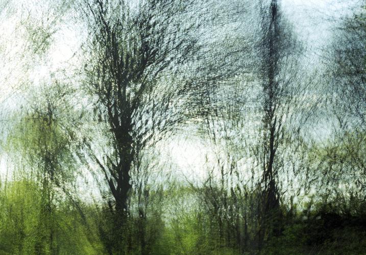 Green Rhythm, 2007