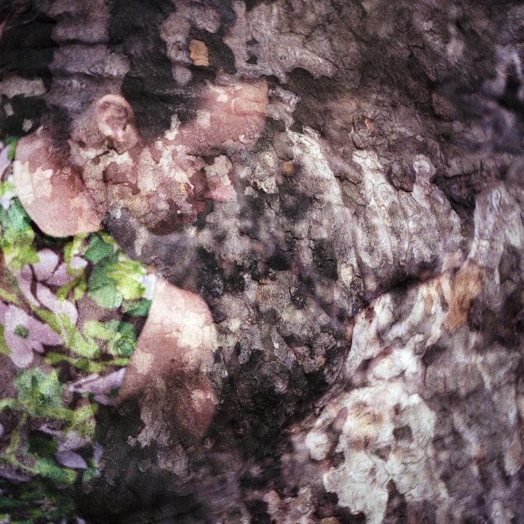 Licia #003-9, 2011