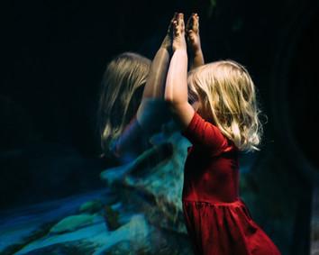 Χαρισματικά Παιδιά,  Μύθοι και Προκαταλήψεις