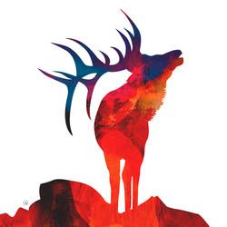 Spirit Elk - Sunset