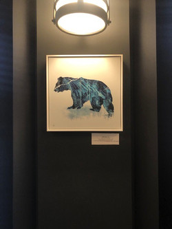 Spirit Bear - Framed Aluminum Matt - 12x