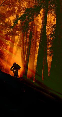 Ventureweb_Biking6