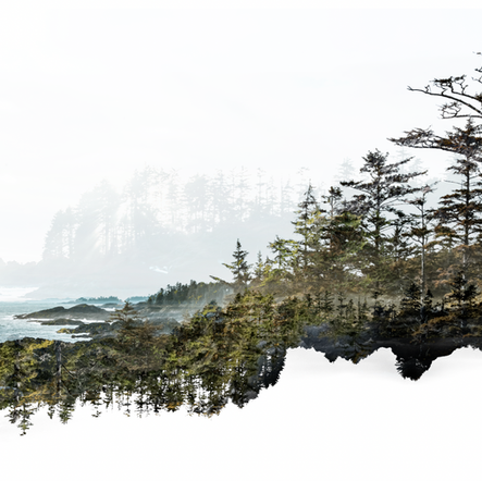 Wandering the Wild Pacific