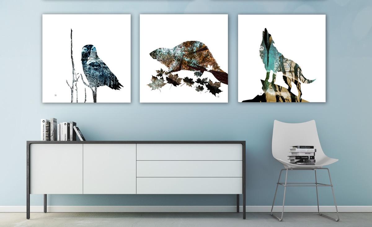 Snowy Owl, Canadian Beaver & Wolf