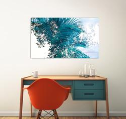 Hawaiian Blue Palms