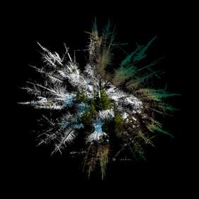 Treeflake - Winter Bliss