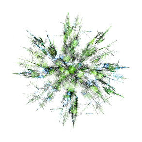 Treeflake - Renewal
