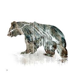 Spirit Bear Timeless