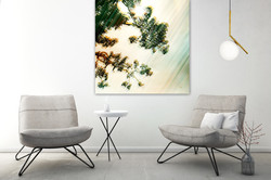 Tree of the Sky - Golden Green