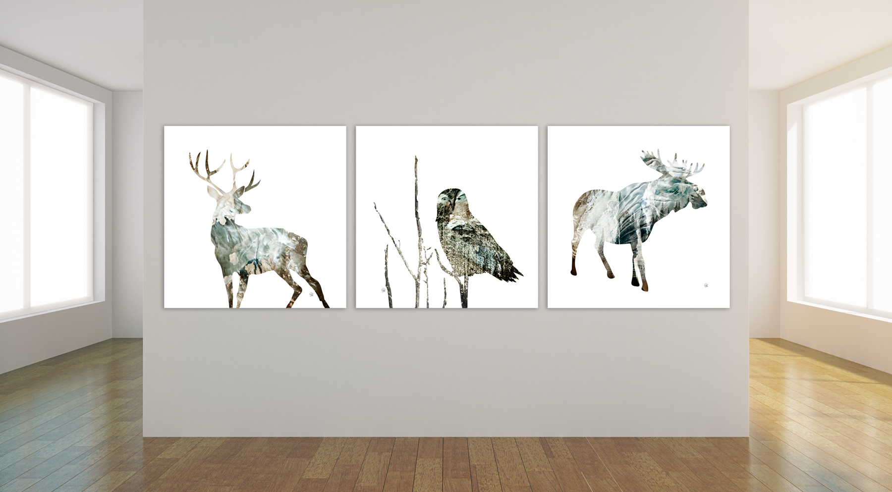 Wildlife Timeless Collection