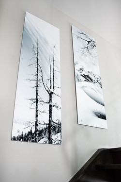 White Series - Vertical