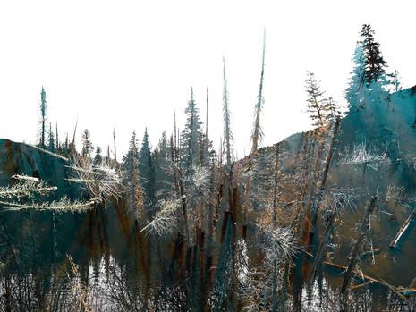 Twilight on the Soo River