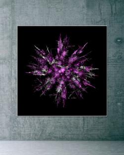 Treeflakes - Transformation