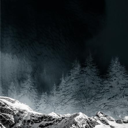 Winter Wonderland - Vertical